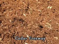 cedar freeway bark from Vic Hannan